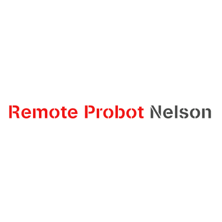 Replacement Remote Control for Probot Nelson A3